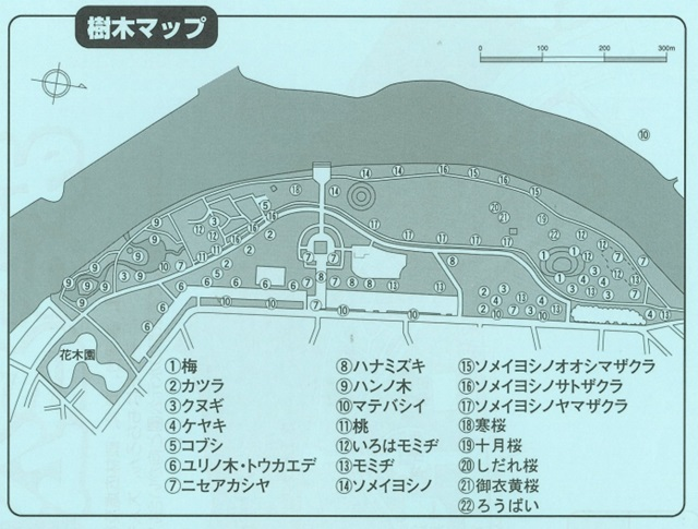 サクラ みさと公園 マップ