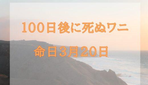 100日後に死ぬワニの39日目と40日目の意味を考察!命日(結末)の予想は?