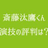 斎藤汰鷹 演技 評判