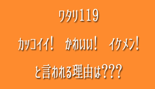 ワタリ119が「かっこいい!かわいい!イケメン!」と愛される理由は?