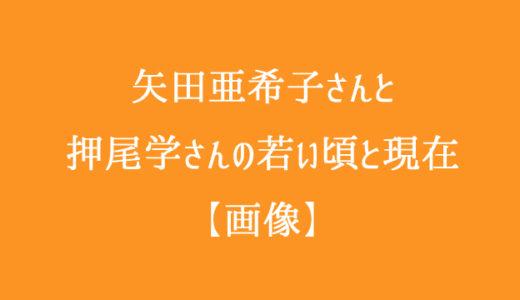 矢田亜希子と押尾学の今現在とやまとなでしこの若い頃の写真まとめ