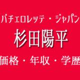 画家杉田陽平 バチェロレッテ・ジャパン 年収 絵 値段