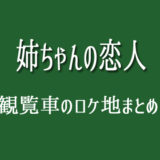 姉ちゃんの恋人 ロケ地 観覧車 葛西臨海公園