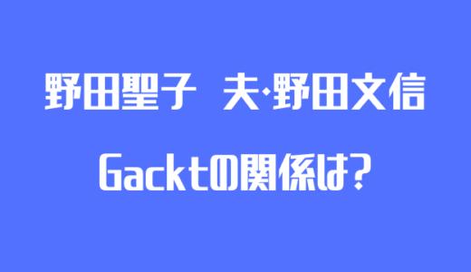 野田聖子とGacktと野田文信の関係とガクトコインの現在